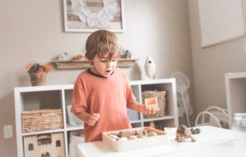 Quels sont les meilleurs jeux Montessori ?